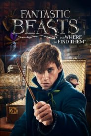 Fantastic Beasts and Where to Find Them (2016) Dual Audio BluRay 480p & 720p GDrive
