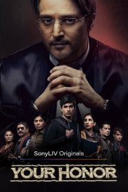 Your Honor : Season 1 COMPLETE Hindi WEB-DL 480p & 720p | GDrive | 1Drive | SonyLiv Series