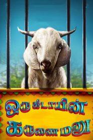 Oru Kidayin Karunai Manu (2017) 480P 720P GDrive