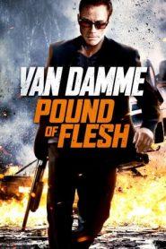 Pound of Flesh (2015) BluRay 480p & 720p GDRive