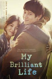 My Brilliant Life (2014) BluRay Korean 480P 720P GDrive