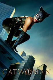 Catwoman (2004) BluRay 480p & 720p Dual Audio [Hindi-English] | GDrive