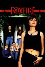 Foxfire (1996) WEB-HD 480P 720P x264