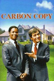 Carbon Copy (1981) BluRay 480P 720P x264