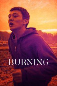Burning (2018) HDRip 480p & 720p | GDRive | BSub