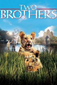 Two Brothers (2004) BluRay 480p & 720p | GDrive | 1Drive | Bsub