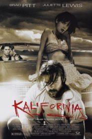 Kalifornia (1993) BluRay 480P 720P 1080P 2K x264