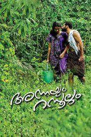 Annayum Rasoolum (2013) Malayalam DvDRip 700MB | GDrive