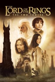 The Lord of the Rings: The Two Towers (2002) Dual Audio EXTENDED BluRay 480p & 720p GDrive | BSub