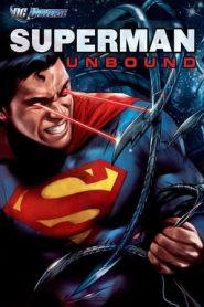 Superman: Unbound (2013) BluRay 480p & 720p | GDrive