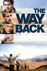The Way Back (2010) Dual Audio BluRay 480p & 720p | GDrive
