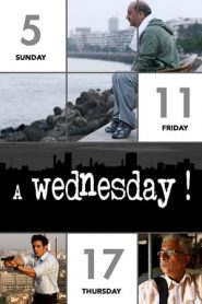A Wednesday! (2008) Hindi BluRay 480P 720P Gdrive