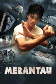 Merantau Warrior | Merantau (2009) BluRay 480p & 720p | GDrive