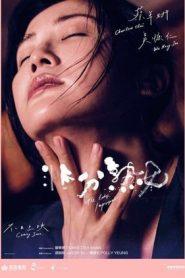 The Lady Improper (2019) Japan BluRay 480p & 720p   GDrive