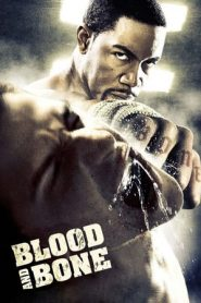 Blood and Bone (2009) BluRay 480p & 720p GDrive