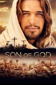 Son of God (2014) Dual Audio BluRay 480p & 720p | GDrive