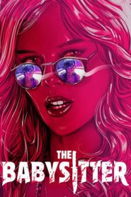 The Babysitter (2017) Dual Audio [Hindi – English] NF WEB-DL 480p & 720p GDrive | 1Drive