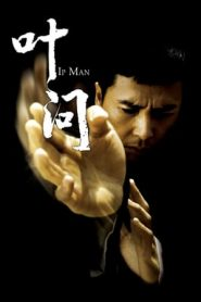 Ip Man (2008) Dual Audio [Hindi – English – Tamil] BluRay 480p & 720p | GDRive