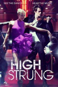 High Strung (2016) BRRip 480p & 720p | GDrive | Bsub