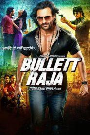 Bullett Raja (2013) Hindi WEBRip 720p HEVC | Gdrive