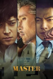Master (2016) Korean Dual Audio ORG [Hindi DD2.0+Korean DD5.1] BluRay 480p & 720p | Gdrive