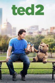 Ted 2 (2015) Dual Audio BluRay [Hindi+ENG] 720p GDRive