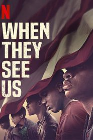 When They See Us : Season 1 NF WEBRip HEVC 720p | [Complete]