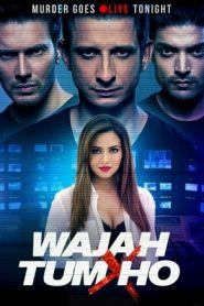 Wajah Tum Ho (2016) Hindi WEBRip 480p & 720p | GDrive
