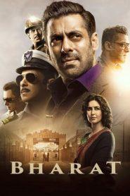 Bharat (2019) Hindi WEB-DL 480p & 720p | GDrive