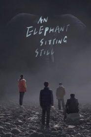 An Elephant Sitting Still (2018) BluRay 480p & 720p | GDrive | 1Drive