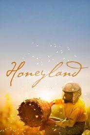 Honeyland (2019) Turkish BluRay 480p & 720p | GDrive