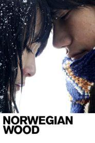 Norwegian Wood (2010) Japanese BluRay 480p 720p | GDrive