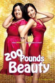 200 Pounds Beauty (2006) BluRay 480p & 720p | GDrive | 1Drive