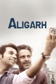 Aligarh (2016) DVDRip 480P 720P GDrive