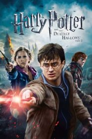 Harry Potter and the Deathly Hallows: Part 2 (2011) Dual Audio BluRay 480P 720P Gdrive
