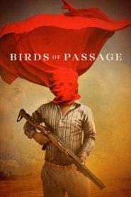 Birds of Passage (2018) BluRay 480p & 720p GDrive