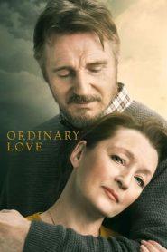 Ordinary Love (2019) HDRip 480p & 720p | GDrive