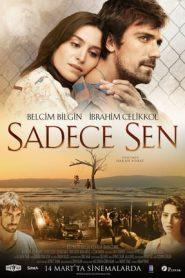 Sadece Sen (2014) WEB-HD 300MB 540p | GDrive | ESub