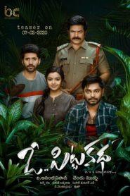 O Pitta Katha (2020) Telugu TRUE WEB-DL HEVC 200MB 480p & 720p | GDrive