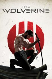 The Wolverine (2013) Dual Audio BluRay 480p, 720p & 1080p | GDrive
