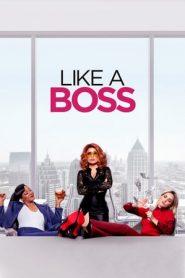 Like a Boss (2020) BluRay Dual Audio ORG [Eng+Hin DD5.1] 480p & 720p | GDrive | Mega | 1Drive