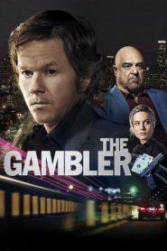 The Gambler (2014) Dual Audio BluRay 480p & 720p GDRive