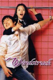 Windstruck (2004) DVDRip 480p & 720p GDRive