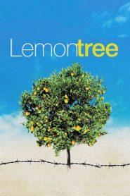 Lemon Tree (2008) DVDRip 480p 720p | GDrive | Bangla Subtitle