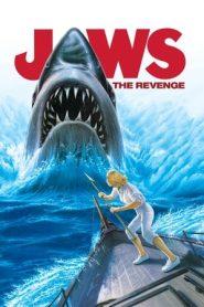 Jaws: The Revenge (1987) BluRay 480p & 720p | GDrive