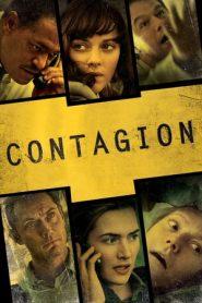 Contagion (2011) Dual Audio [Hindi – English] BluRay 480p & 720p | GDrive