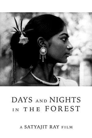 অরণ্যের দিনরাত্রি | Aranyer Din Ratri | Days and Nights in the Forest (1970) Bengali DVD 540p | GDrive