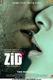 Zid (2014) Hindi WEBRip 400MB 720p | GDrive