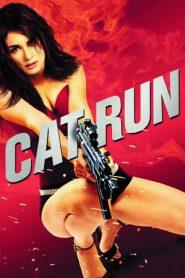 Cat Run (2011) BluRay 480p & 720p GDRive