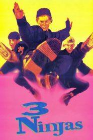 3 Ninjas (1992) BluRay 480p 720p x264 GDrive